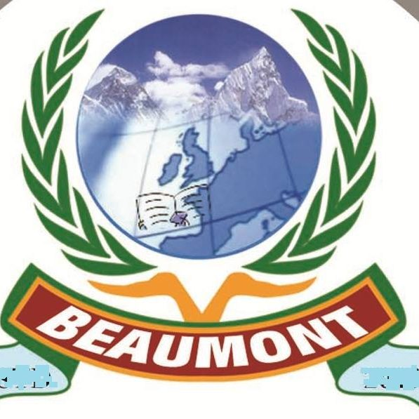 Beaumont Abroad Study and Immigration Services pp