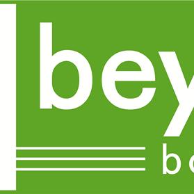 Beyond Boundaries pp