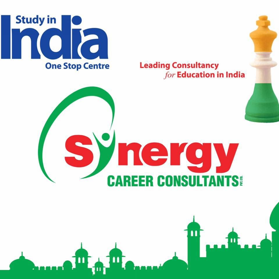 Synergy Career Consultants pp